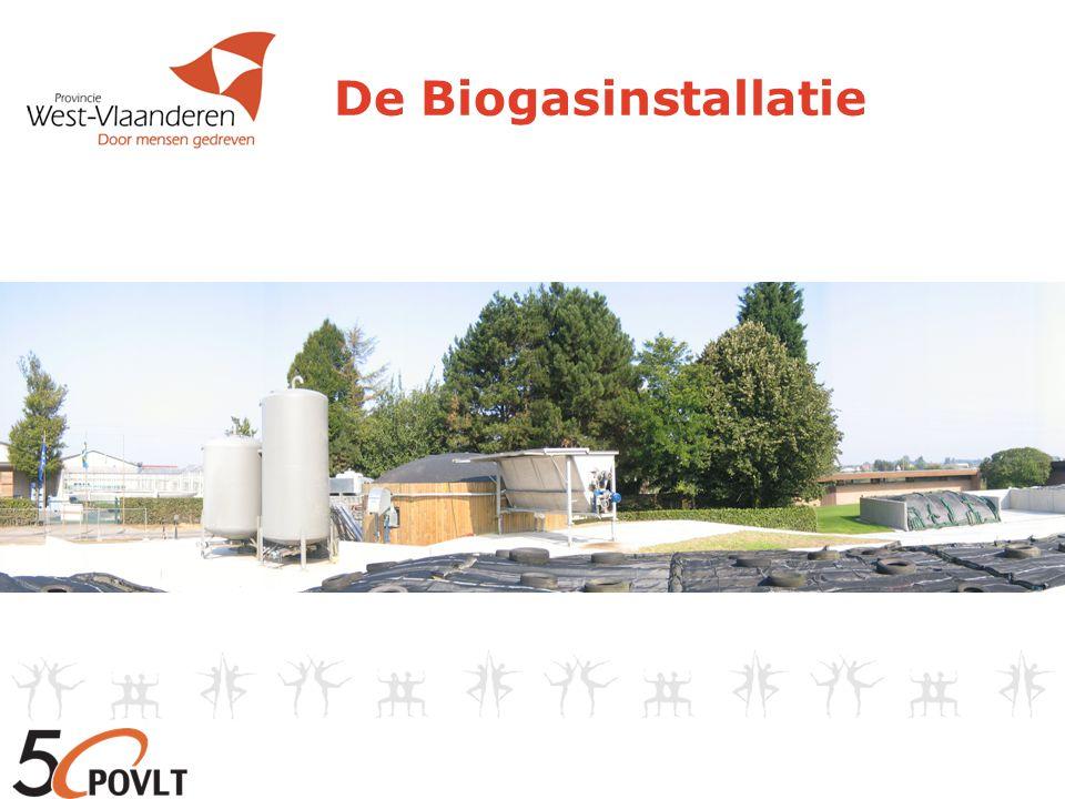 De Biogasinstallatie