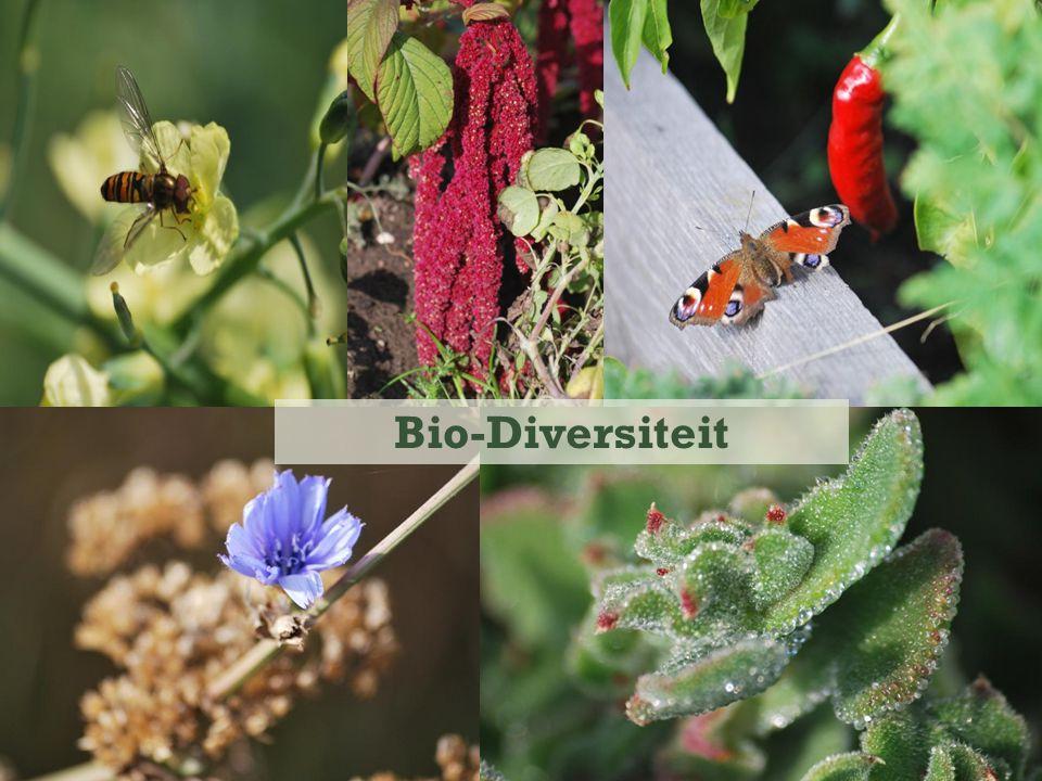 Bio-Diversiteit