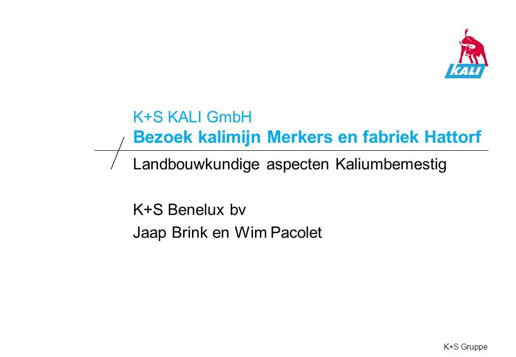 05112008, Landbouwkundige aspecten Kaliumbemesting, Jaap Brink en Wim Pacolet K+S Gruppe1 Functie van Kalium K+S Benelux bv / K+S KALI GmbH Kalium: Onmisbaar element bij vele stofwisselingsprocessen.