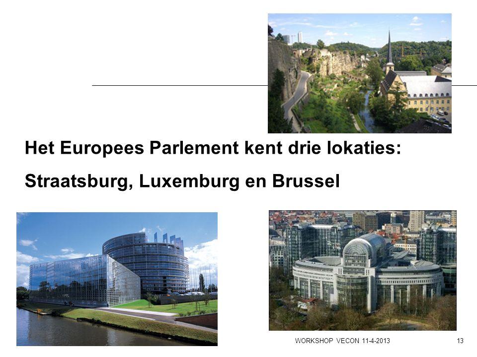 Het Europees Parlement kent drie lokaties: Straatsburg, Luxemburg en Brussel WORKSHOP VECON 11-4-2013 13