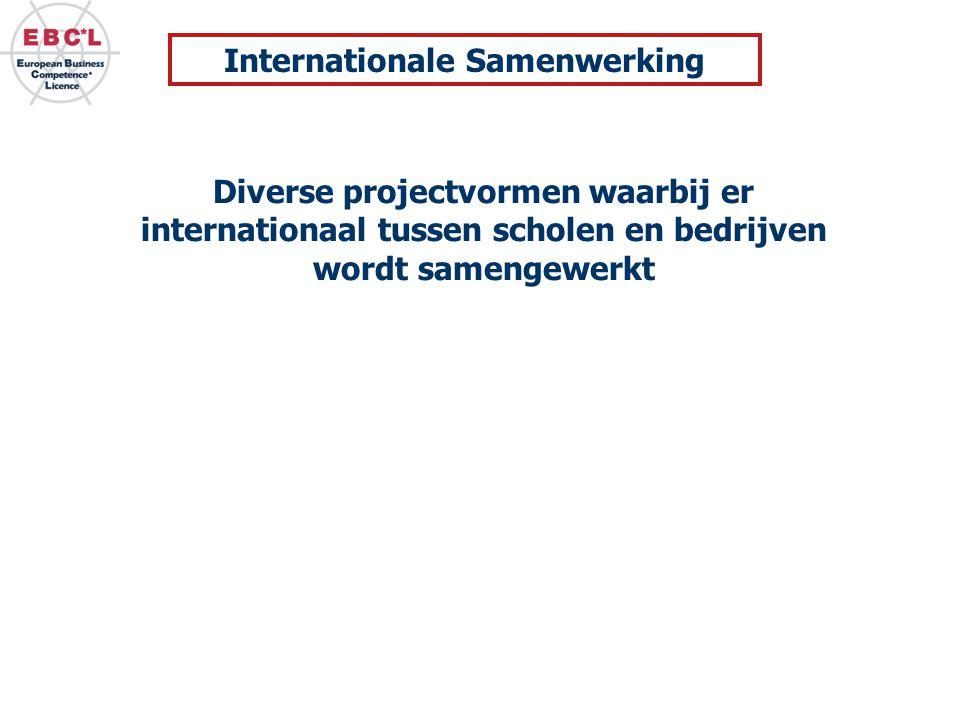 Diverse projectvormen waarbij er internationaal tussen scholen en bedrijven wordt samengewerkt Internationale Samenwerking