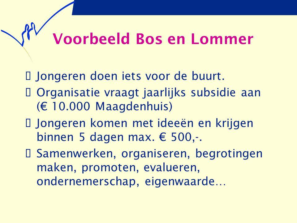 Voorbeeld Bos en Lommer  Jongeren doen iets voor de buurt.  Organisatie vraagt jaarlijks subsidie aan (€ 10.000 Maagdenhuis)  Jongeren komen met id