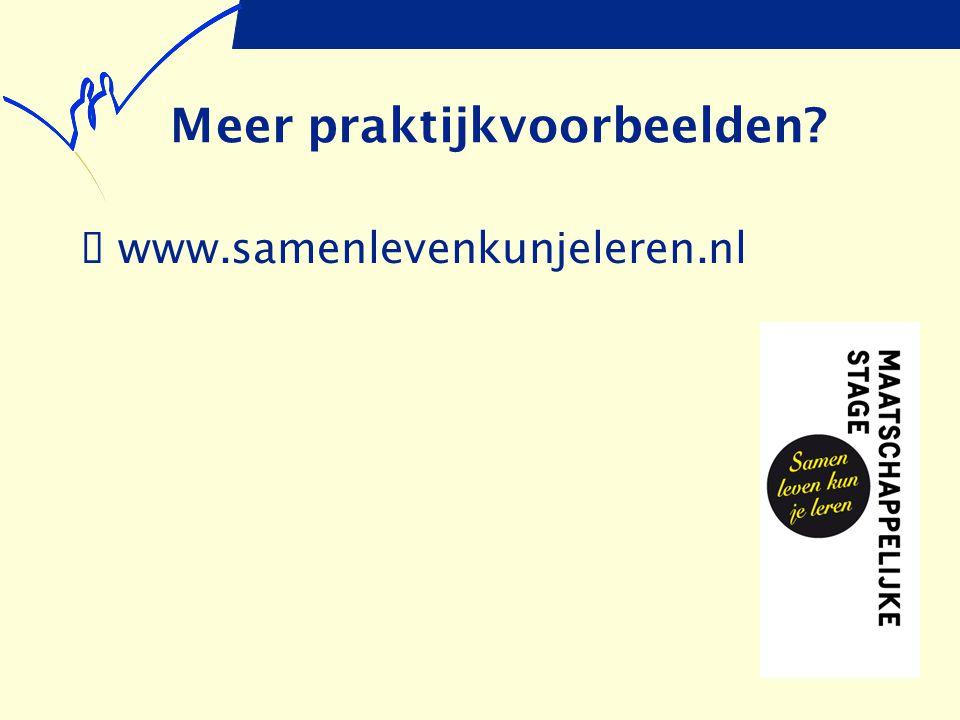 Meer praktijkvoorbeelden?  www.samenlevenkunjeleren.nl
