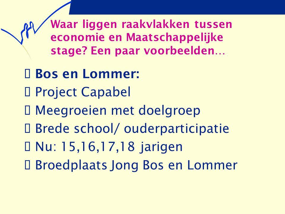 Waar liggen raakvlakken tussen economie en Maatschappelijke stage? Een paar voorbeelden…  Bos en Lommer:  Project Capabel  Meegroeien met doelgroep