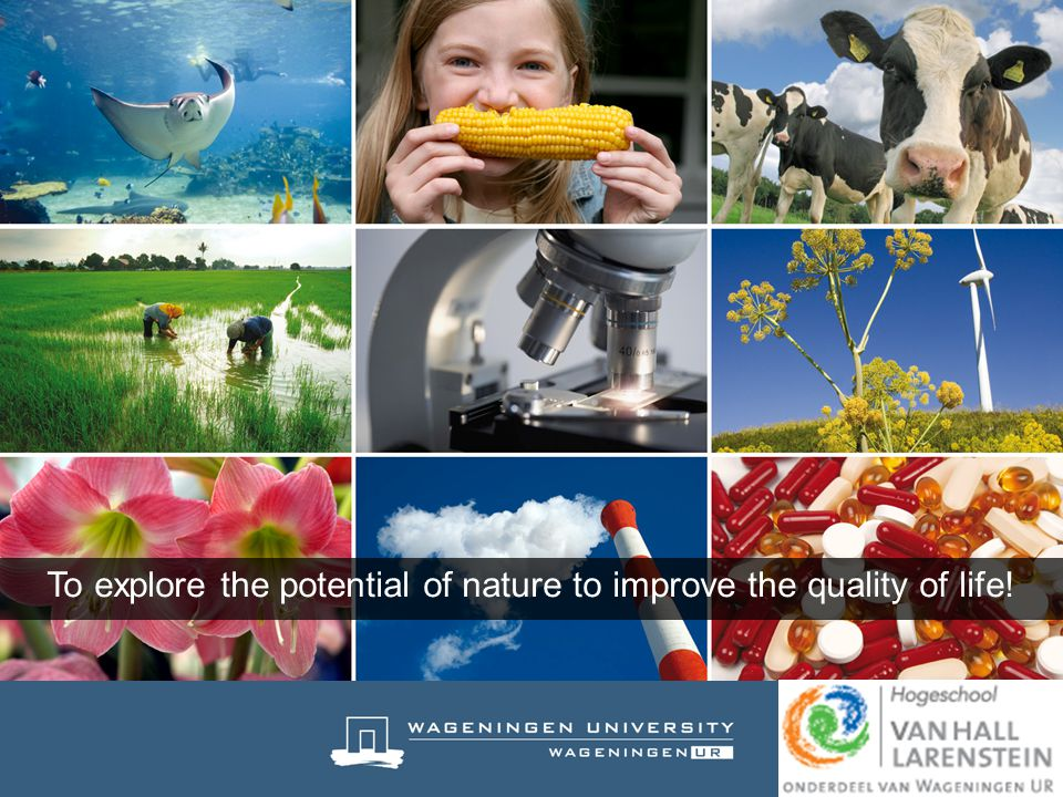 To explore the potential of nature to improve the quality of life!