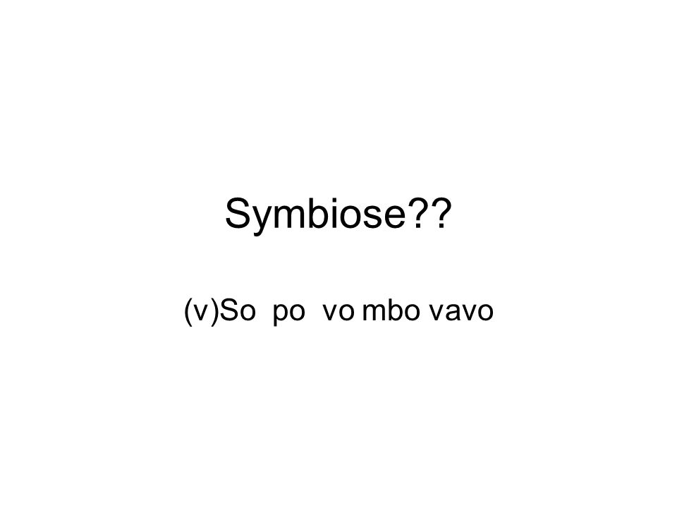 Symbiose?? (v)So po vo mbo vavo