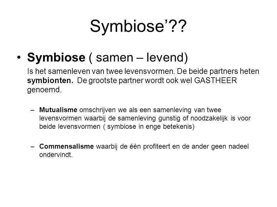 Symbiose'?? Symbiose ( samen – levend) Is het samenleven van twee levensvormen. De beide partners heten symbionten. De grootste partner wordt ook wel