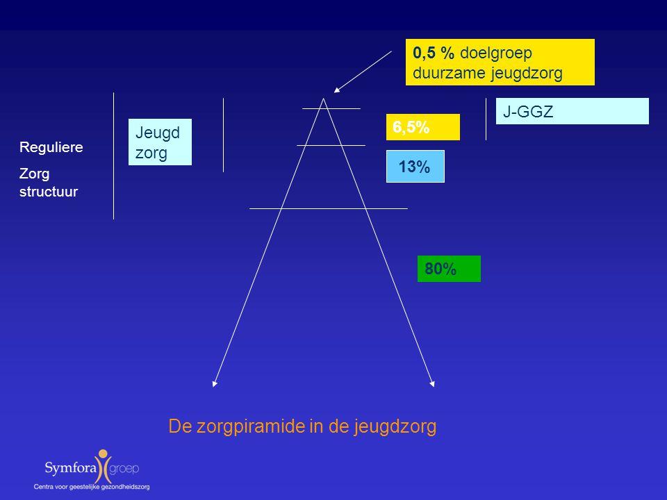 13% 80% 6,5% 0,5 % doelgroep duurzame jeugdzorg J-GGZ Jeugd zorg Reguliere Zorg structuur De zorgpiramide in de jeugdzorg