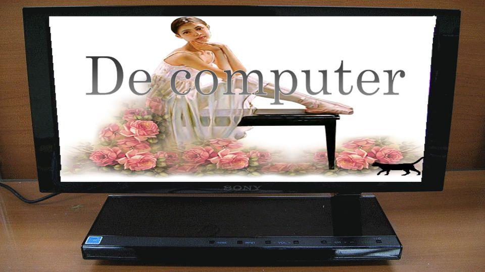 Het antipathieke van een computer is dat hij alleen ja of neen kan zeggen, maar niet misschien.