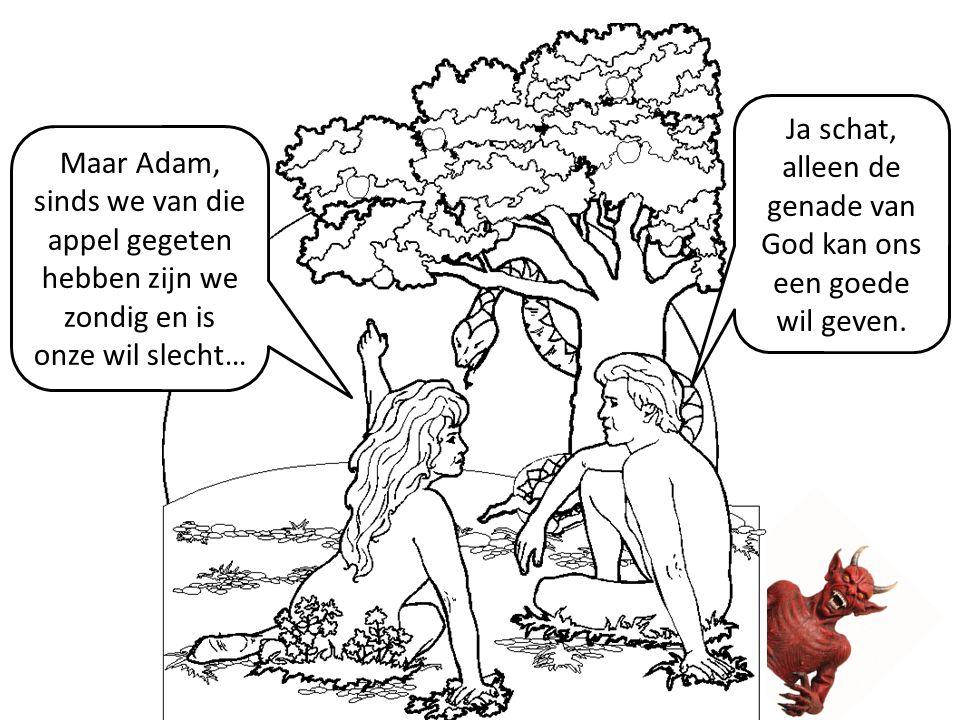 Maar Adam, sinds we van die appel gegeten hebben zijn we zondig en is onze wil slecht… Ja schat, alleen de genade van God kan ons een goede wil geven.
