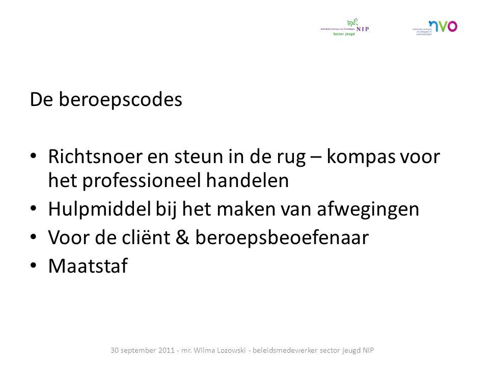 De beroepscodes Richtsnoer en steun in de rug – kompas voor het professioneel handelen Hulpmiddel bij het maken van afwegingen Voor de cliënt & beroepsbeoefenaar Maatstaf 30 september 2011 - mr.