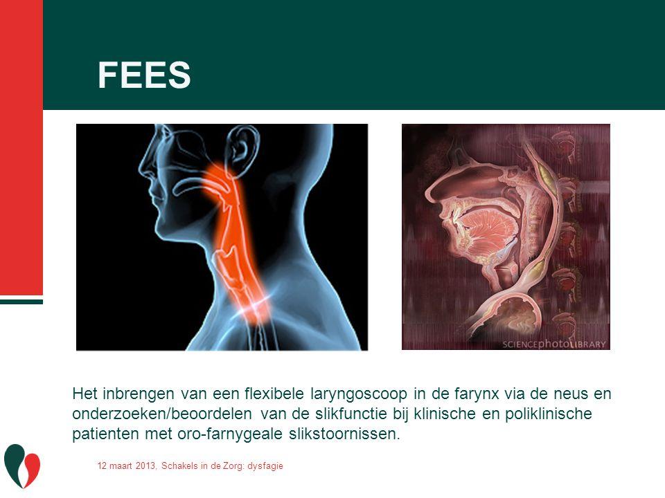 FEES 12 maart 2013, Schakels in de Zorg: dysfagie Het inbrengen van een flexibele laryngoscoop in de farynx via de neus en onderzoeken/beoordelen van