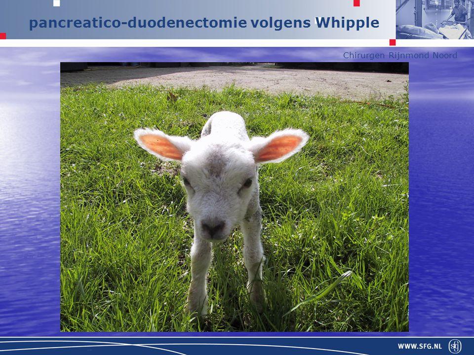 Chirurgen Rijnmond Noord pancreatico-duodenectomie volgens Whipple