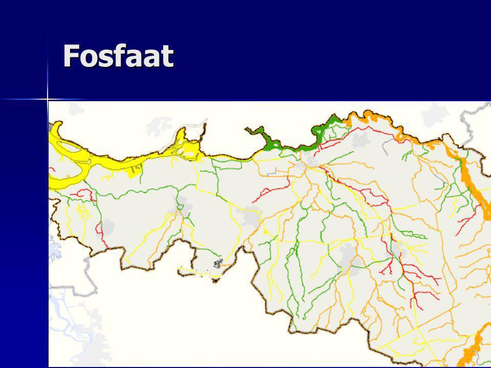 Percentage waterlichamen dat nog niet voldoet stikstoffosfor Rivierenland00 Brabantse Delta 8468 Dommel5266 Aa en Maas 7368