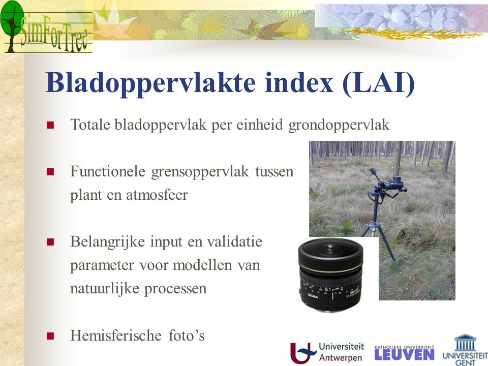 Bladoppervlakte index (LAI) Totale bladoppervlak per einheid grondoppervlak Functionele grensoppervlak tussen plant en atmosfeer Belangrijke input en