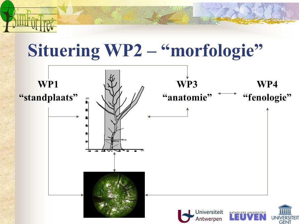 Situering WP2 – morfologie WP1 standplaats WP3 anatomie WP4 fenologie