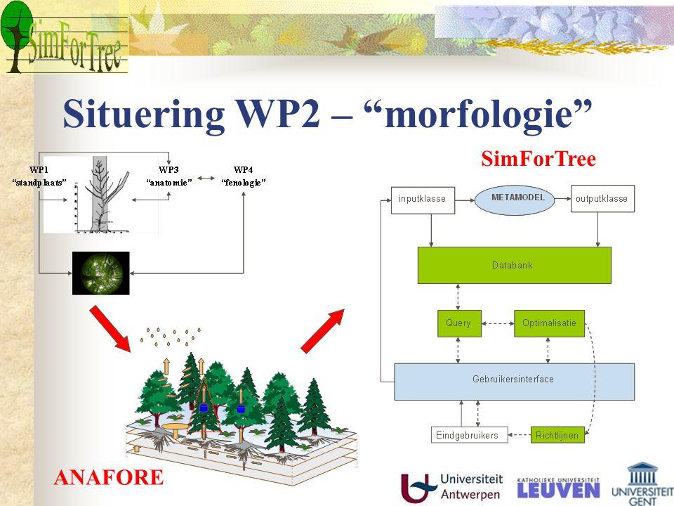 "Situering WP2 – ""morfologie"" ANAFORE SimForTree"