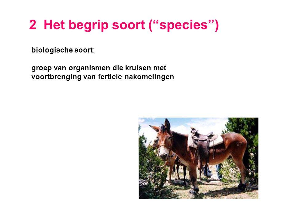"""2 Het begrip soort (""""species"""") biologische soort: groep van organismen die kruisen met voortbrenging van fertiele nakomelingen"""