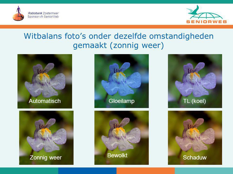 Rabobank Zoetermeer Sponsor v/h SeniorWeb 24 Witbalans foto's onder dezelfde omstandigheden gemaakt (zonnig weer) AutomatischGloeilampTL (koel) Zonnig