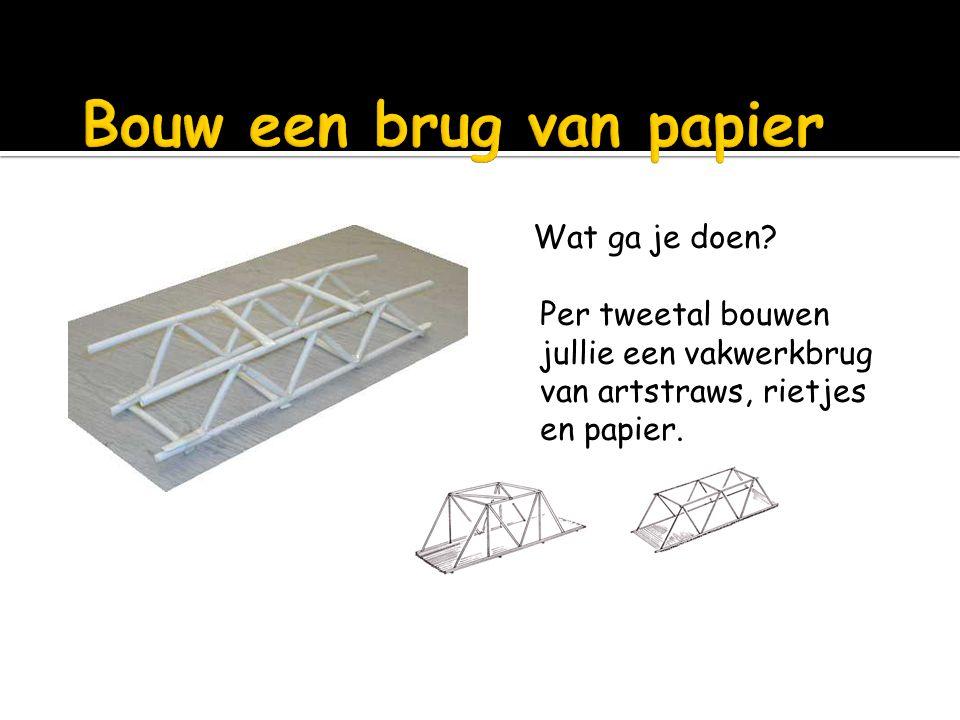 Wat ga je doen? Per tweetal bouwen jullie een vakwerkbrug van artstraws, rietjes en papier.