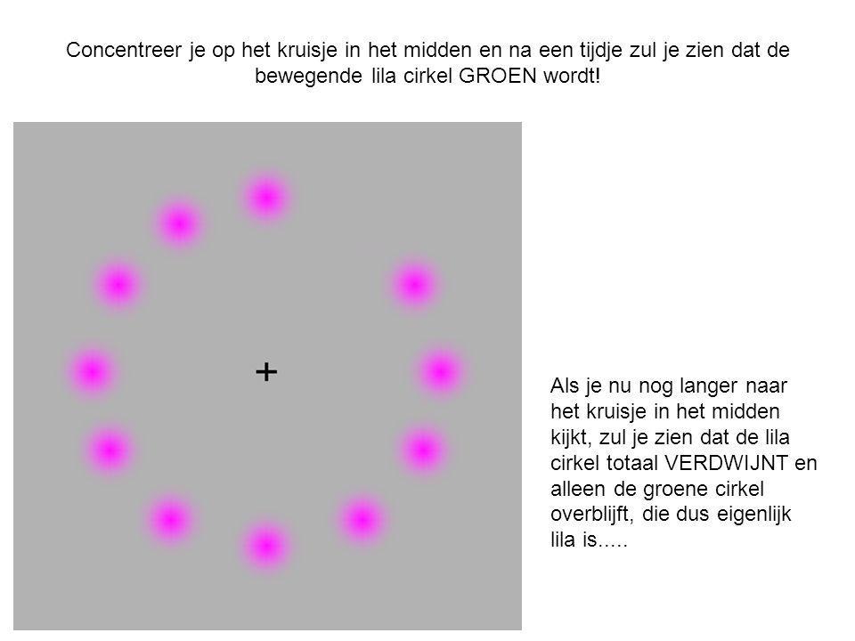 Concentreer je op het kruisje in het midden en na een tijdje zul je zien dat de bewegende lila cirkel GROEN wordt! Als je nu nog langer naar het kruis