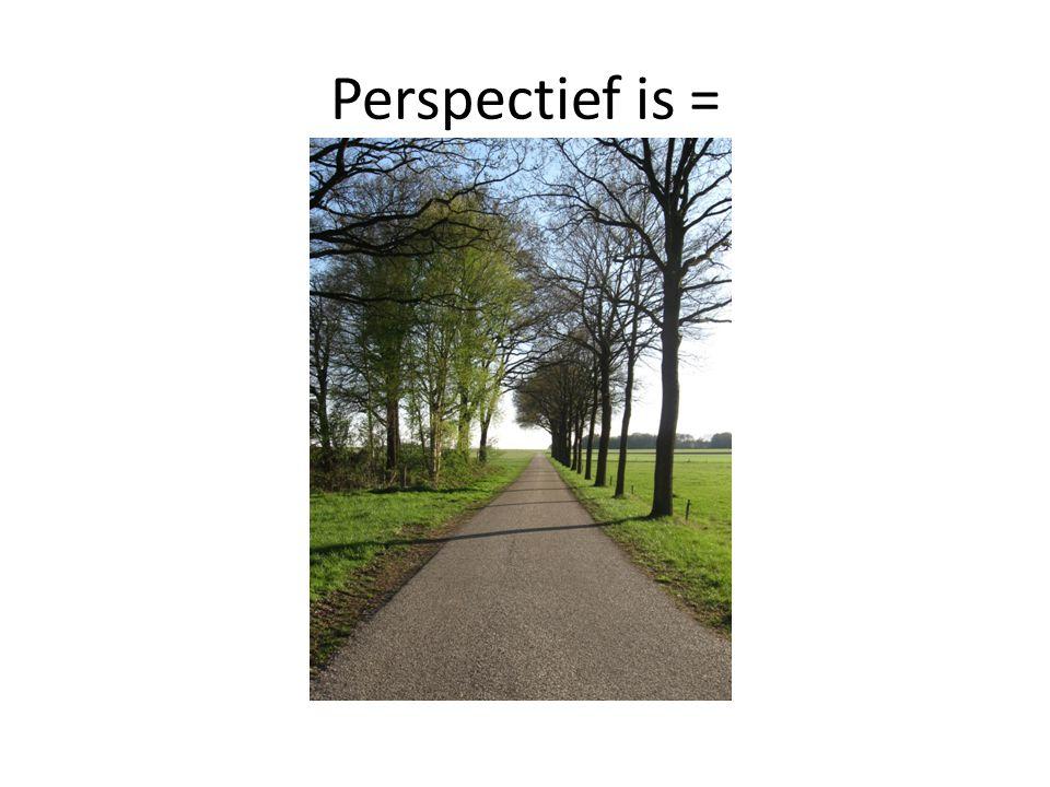 Perspectief is =