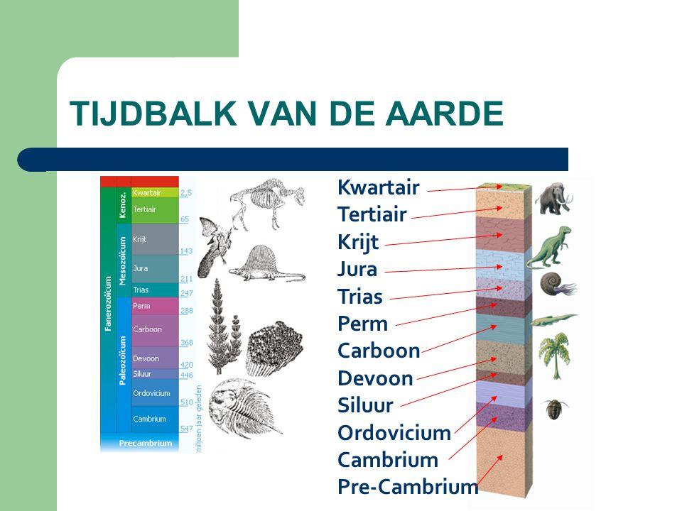 Kwartair Tertiair Krijt Jura Trias Perm Carboon Devoon Siluur Ordovicium Cambrium Pre-Cambrium