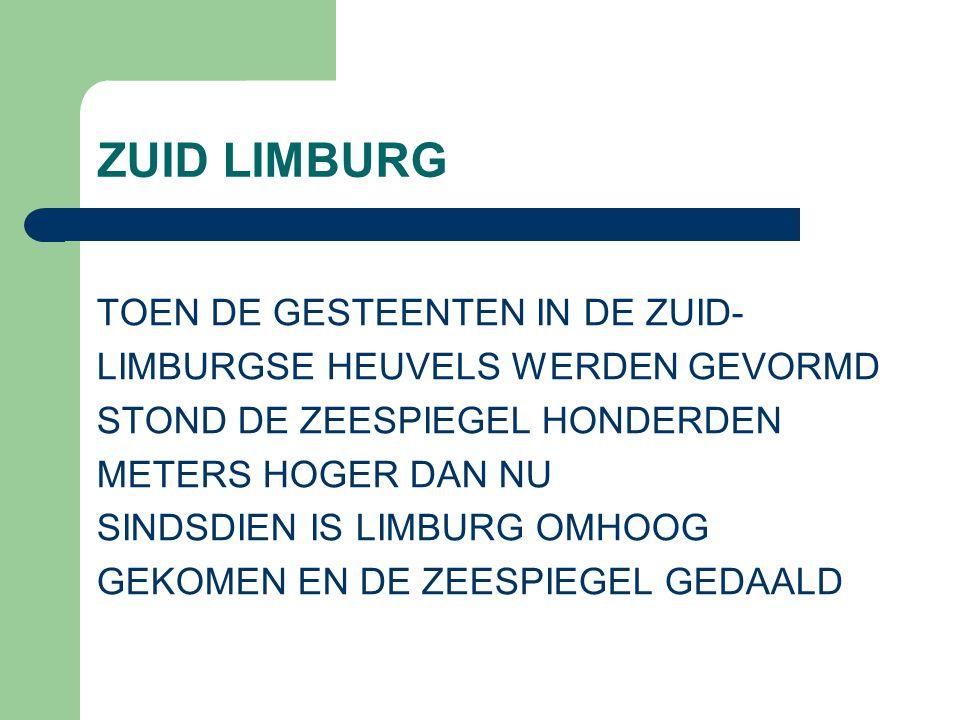 ZUID LIMBURG TOEN DE GESTEENTEN IN DE ZUID- LIMBURGSE HEUVELS WERDEN GEVORMD STOND DE ZEESPIEGEL HONDERDEN METERS HOGER DAN NU SINDSDIEN IS LIMBURG OMHOOG GEKOMEN EN DE ZEESPIEGEL GEDAALD
