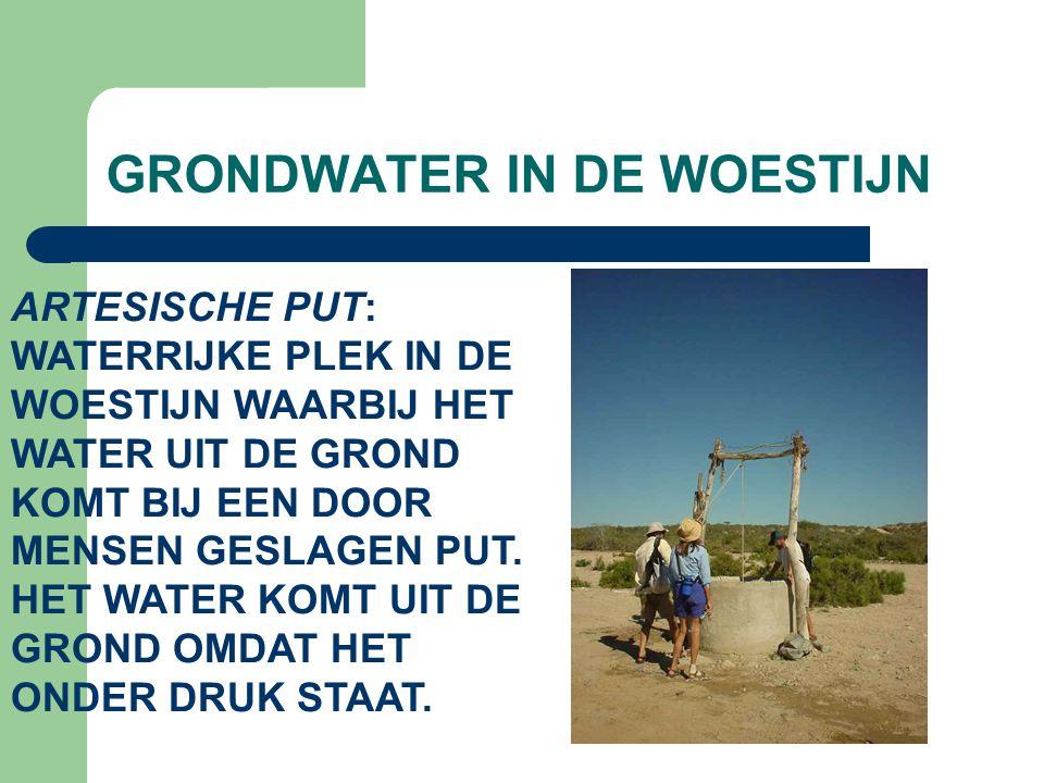 GRONDWATER IN DE WOESTIJN ARTESISCHE PUT: WATERRIJKE PLEK IN DE WOESTIJN WAARBIJ HET WATER UIT DE GROND KOMT BIJ EEN DOOR MENSEN GESLAGEN PUT. HET WAT