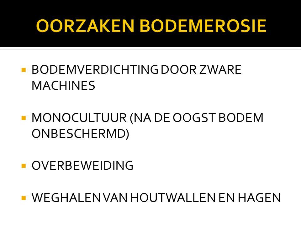  BODEMVERDICHTING DOOR ZWARE MACHINES  MONOCULTUUR (NA DE OOGST BODEM ONBESCHERMD)  OVERBEWEIDING  WEGHALEN VAN HOUTWALLEN EN HAGEN