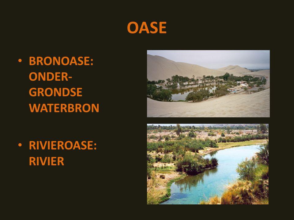 OASE BRONOASE: ONDER- GRONDSE WATERBRON RIVIEROASE: RIVIER