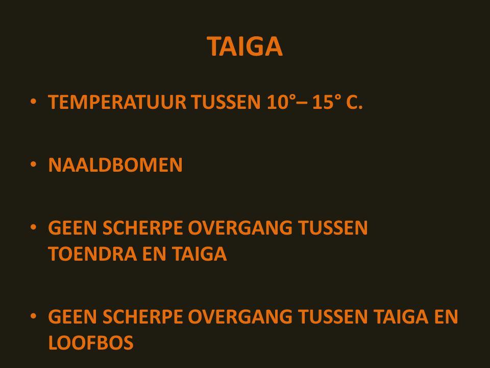 TAIGA TEMPERATUUR TUSSEN 10°– 15° C.