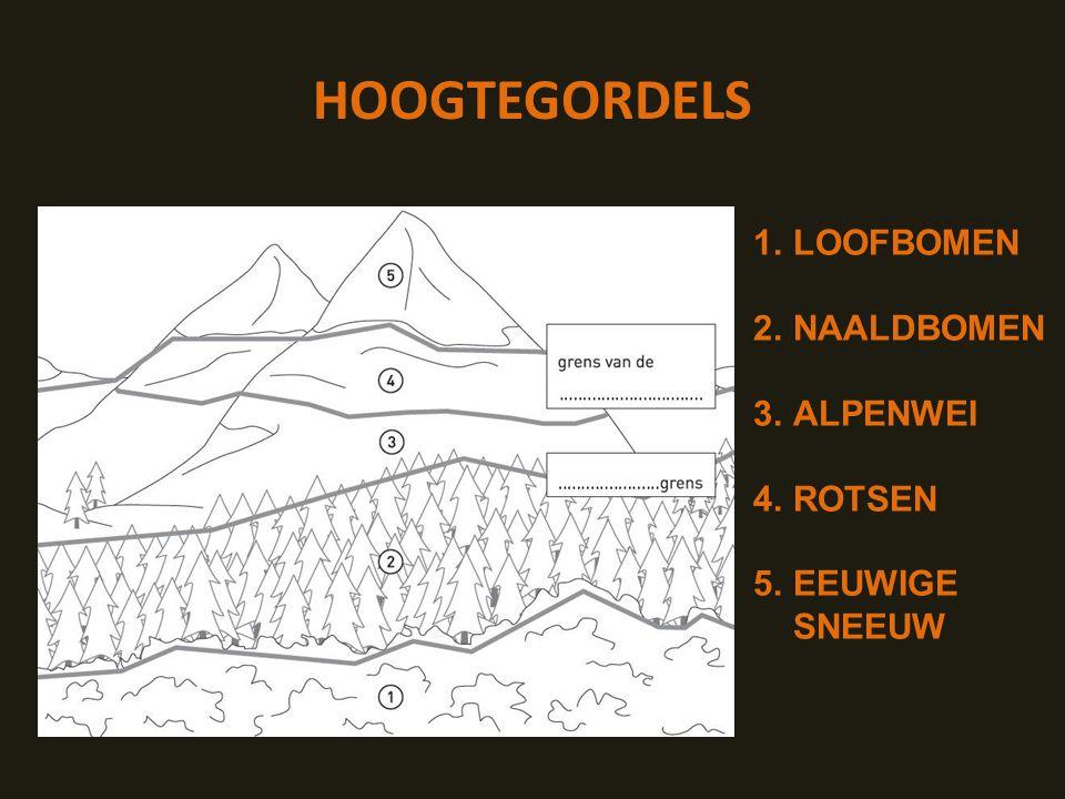 HOOGTEGORDELS 1.LOOFBOMEN 2.NAALDBOMEN 3.ALPENWEI 4.ROTSEN 5.EEUWIGE SNEEUW