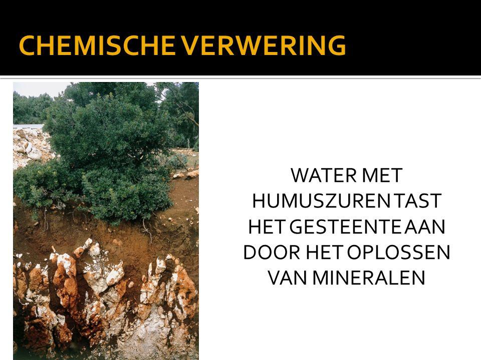 WATER MET HUMUSZUREN TAST HET GESTEENTE AAN DOOR HET OPLOSSEN VAN MINERALEN CHEMISCHE VERWERING