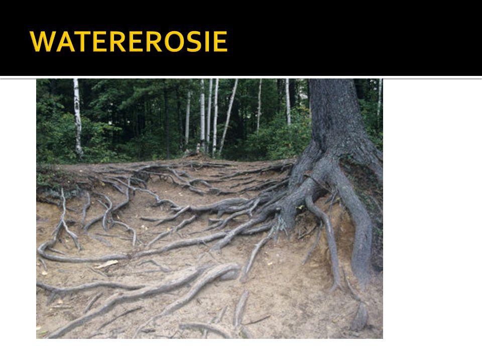 WATEREROSIE