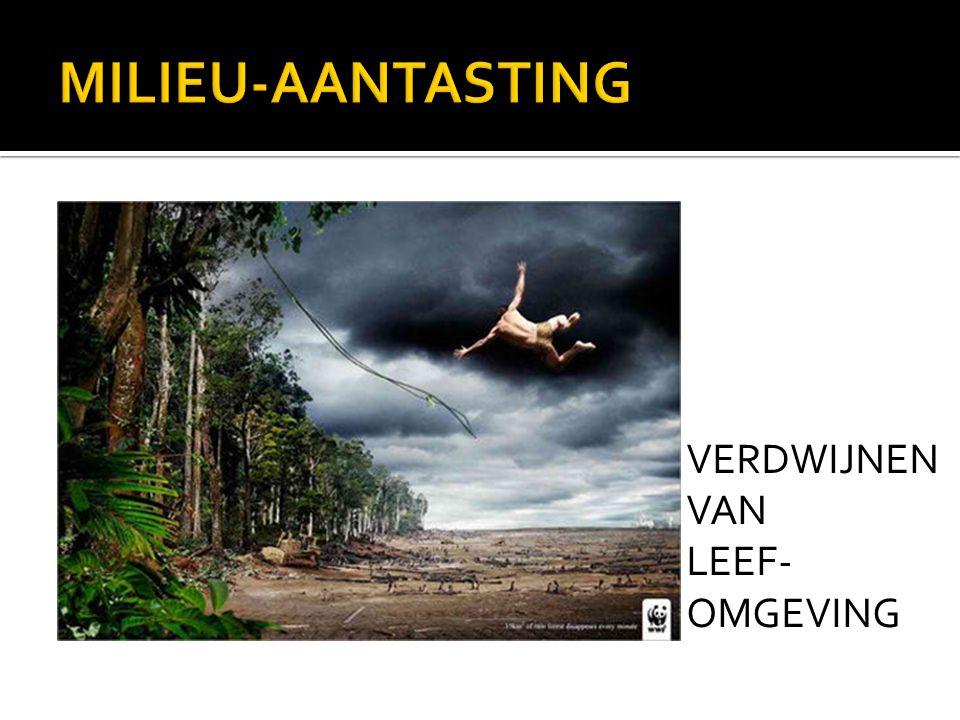 VERDWIJNEN VAN LEEF- OMGEVING