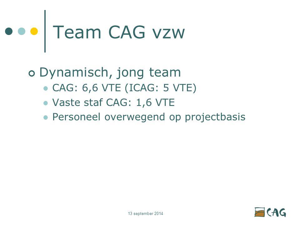 13 september 2014 Team CAG vzw Dynamisch, jong team CAG: 6,6 VTE (ICAG: 5 VTE) Vaste staf CAG: 1,6 VTE Personeel overwegend op projectbasis