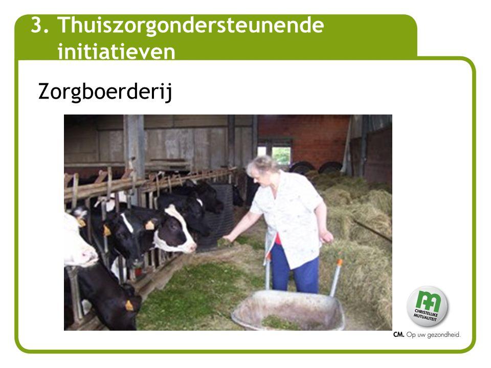 Zorgboerderij 3.Thuiszorgondersteunende initiatieven