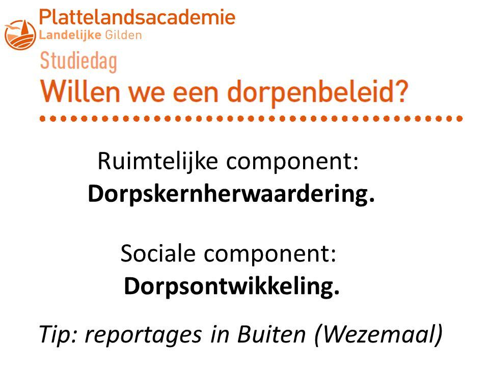 Ruimtelijke component: Dorpskernherwaardering. Sociale component: Dorpsontwikkeling. Tip: reportages in Buiten (Wezemaal)