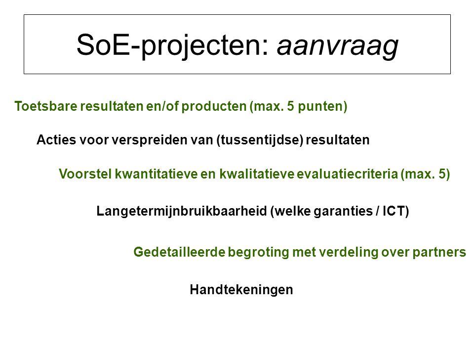 SoE-projecten: aanvraag Toetsbare resultaten en/of producten (max.