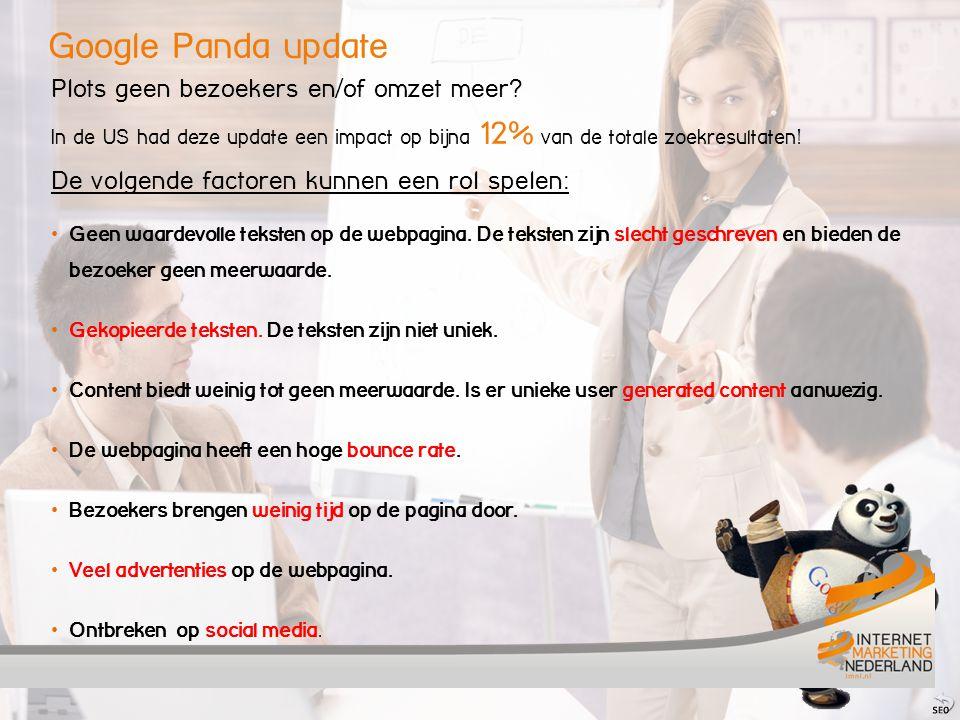 Google Panda update Plots geen bezoekers en/of omzet meer.