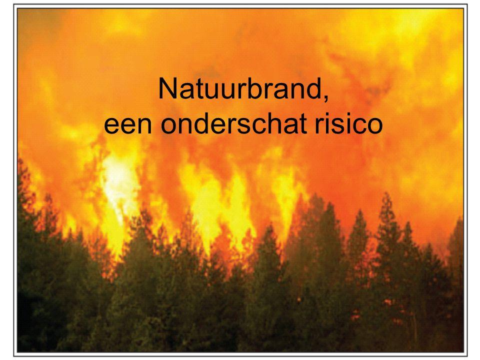 Natuurbrand, een onderschat risico
