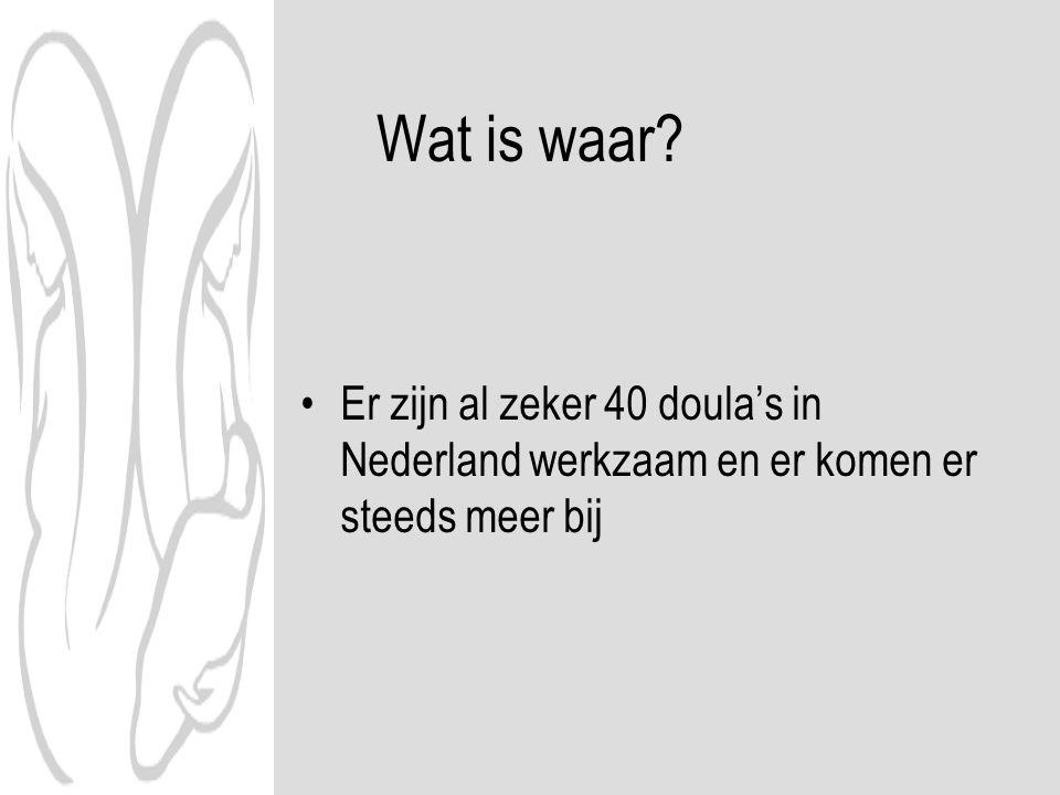 Wat is waar? Er zijn al zeker 40 doula's in Nederland werkzaam en er komen er steeds meer bij