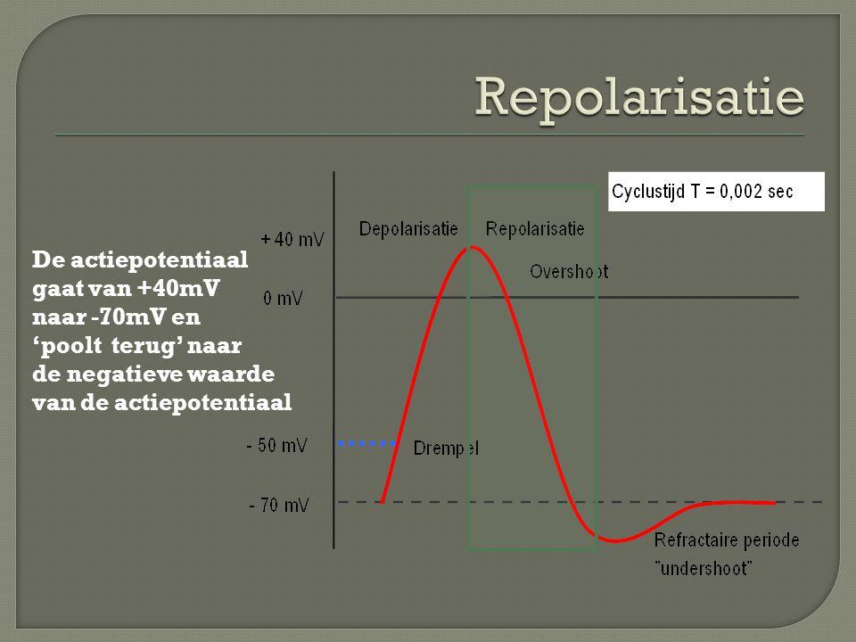  Module OZT-Reanimatie (pdf bestand openen) Hoofdstuk 2 Paragraaf 2.4.3  Module PZT-Neurologie Hoofdstuk 1 Paragraaf 1.7.1.1 en 1.7.1.2