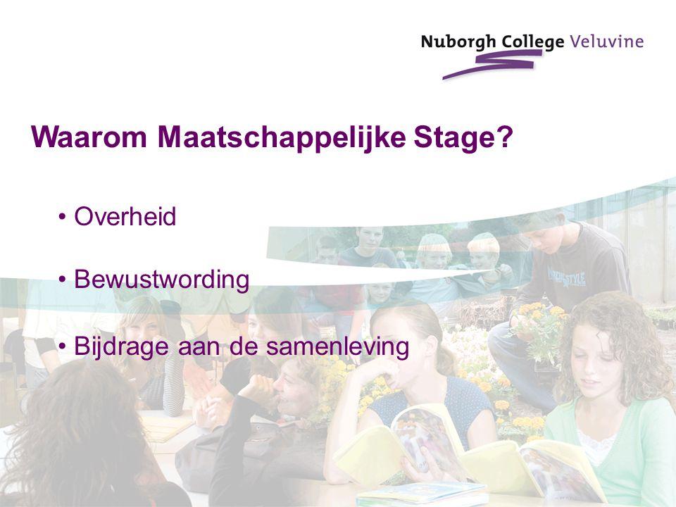 Waarom Maatschappelijke Stage? Overheid Bewustwording Bijdrage aan de samenleving