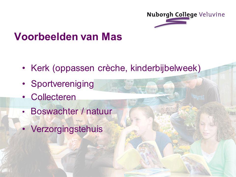Voorbeelden van Mas Sportvereniging Collecteren Kerk (oppassen crèche, kinderbijbelweek) Boswachter / natuur Verzorgingstehuis