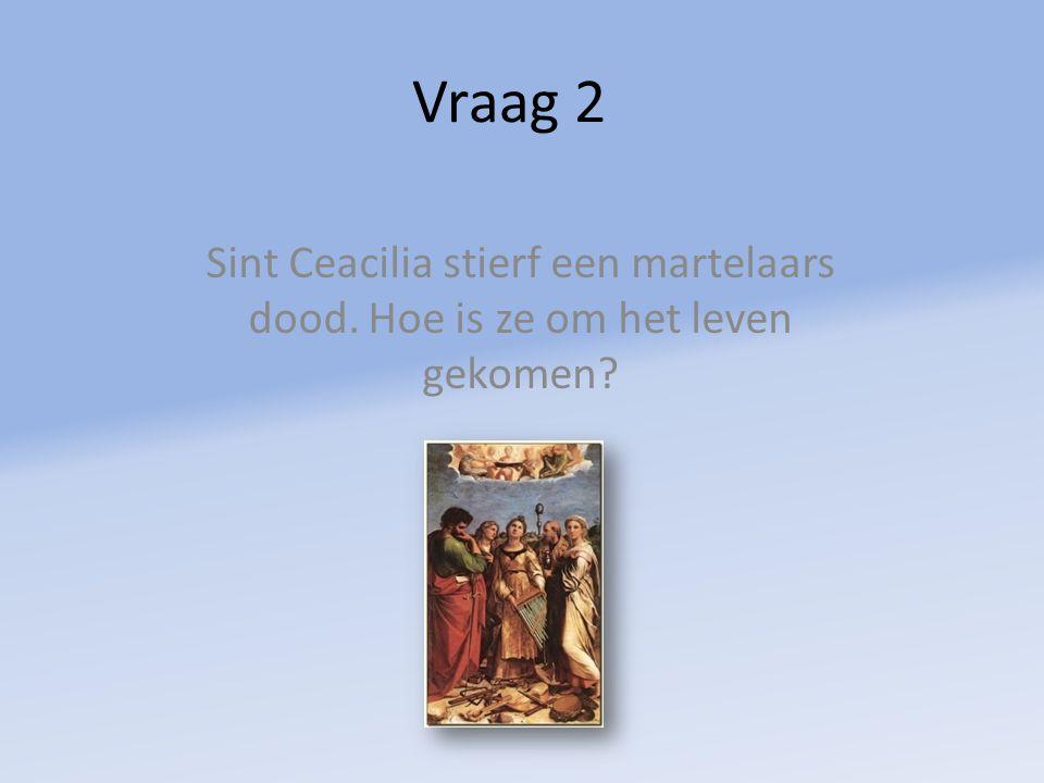 Vraag 2 Sint Ceacilia stierf een martelaars dood. Hoe is ze om het leven gekomen?
