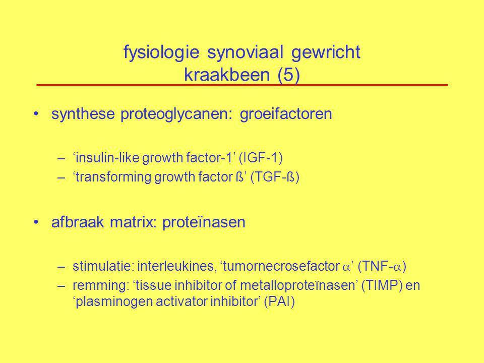 fysiologie synoviaal gewricht kraakbeen (5) synthese proteoglycanen: groeifactoren –'insulin-like growth factor-1' (IGF-1) –'transforming growth facto