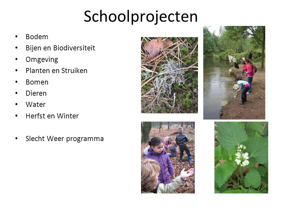 Schoolprojecten Bodem Bijen en Biodiversiteit Omgeving Planten en Struiken Bomen Dieren Water Herfst en Winter Slecht Weer programma