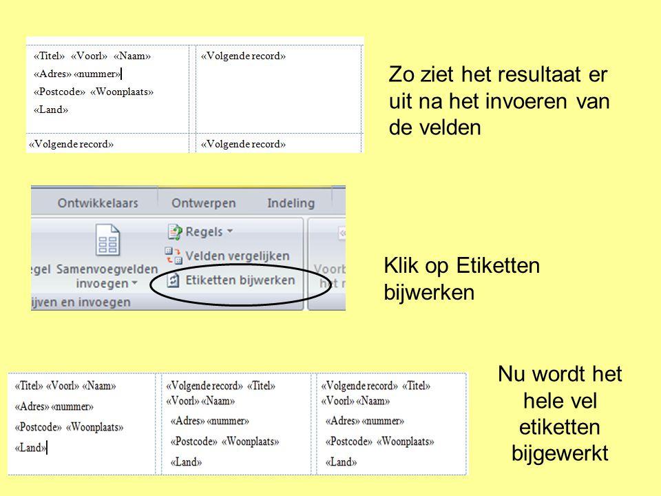 Zo ziet het resultaat er uit na het invoeren van de velden Klik op Etiketten bijwerken Nu wordt het hele vel etiketten bijgewerkt